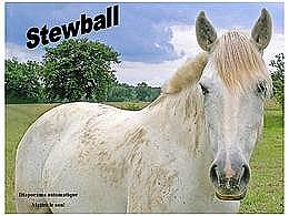 diaporama pps Stewball