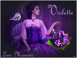 diaporama pps L'amour c'est comme un bouquet de violette