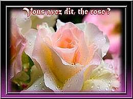 diaporama pps Vous avez dit – The rose