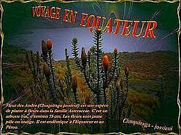 diaporama pps Voyage en équateur