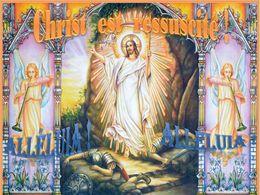 diaporama pps Alleluia – Christ est ressuscité