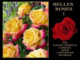 diaporama pps Belles roses 1