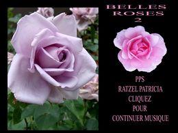 diaporama pps Belles roses 2