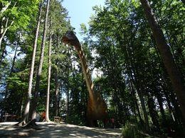 diaporama pps Dino parc Rasnov