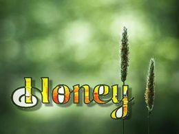 diaporama pps Honey