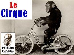 diaporama pps Le cirque