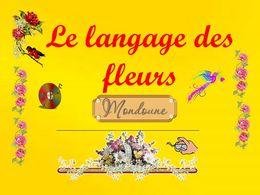 diaporama pps Le langage des fleurs