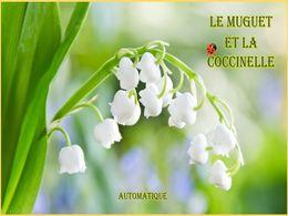 diaporama pps Le muguet et la coccinelle bis