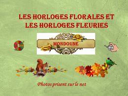 diaporama pps Les horloges florales