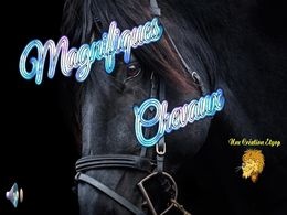 diaporama pps Magnifiques chevaux