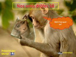 diaporama pps Nos amis droles 58