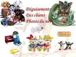 diaporama pps Nos amis les chiens – Costumes