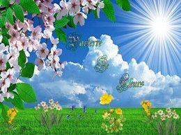 diaporama pps Parterre de fleurs