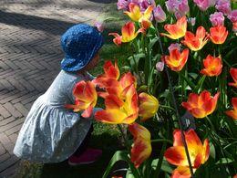 diaporama pps Printemps – Chaque fleur a une histoire 2