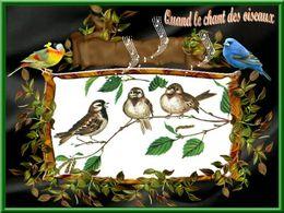 diaporama pps Quand le chant des oiseaux