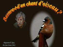 diaporama pps Restera t'il un chant d'oiseau