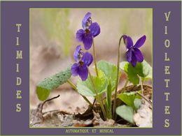 diaporama pps Timides violettes