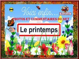 diaporama pps Vive le printemps 2021