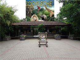 diaporama pps Zoo de la flèche