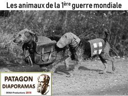 diaporama pps Animaux de la guerre 14-18