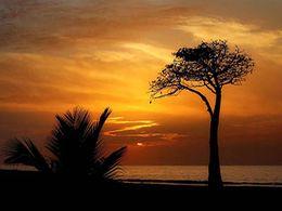 diaporama pps Coucher de soleil en Afrique