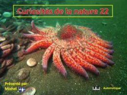diaporama pps Curiosités de la nature 22