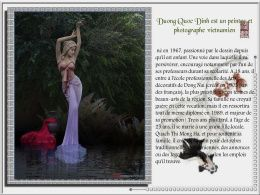 diaporama pps Duong Quoc Dinh – Peintre photographe 2
