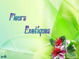 diaporama pps Fleurs exotiques