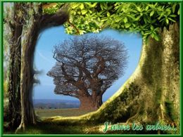 diaporama pps J'aime les arbres
