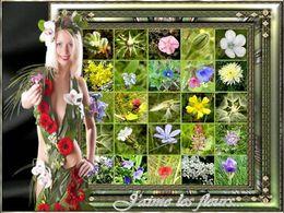 diaporama pps J'aime les fleurs