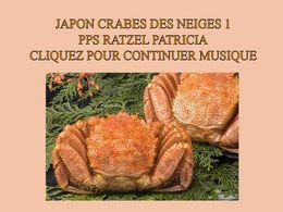 diaporama pps Japon – Crabes des neiges
