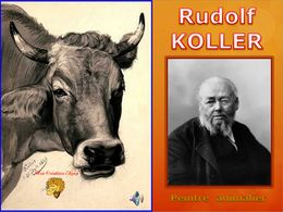 diaporama pps Koller – Peintre animalier