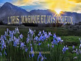 diaporama pps L'iris magique et mystérieux