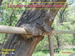 diaporama pps La nature reprend ses droits 6