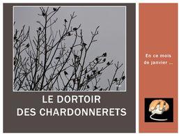 diaporama pps Le dortoir des chardonnerets