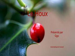 diaporama pps Le houx