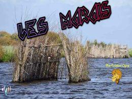 diaporama pps Les marais