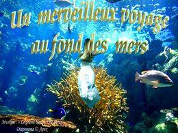 diaporama pps Merveilleux voyage au fond des mers
