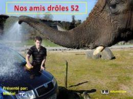 diaporama pps Nos amis drôles 52