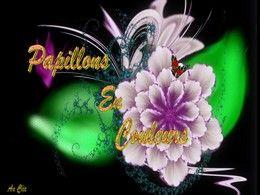 diaporama pps Papillons en couleurs