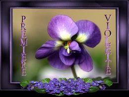 diaporama pps Première violette