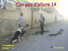 diaporama pps T'as pas d'allure 14