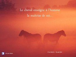 Diaporama de citations sur les chevaux