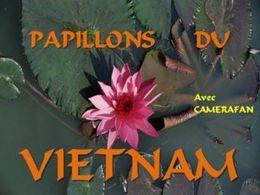 Papillons du Vietnam