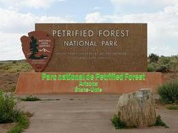 Parc national de Petrified Forest Arizona