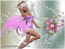Fleurs de la passion 3