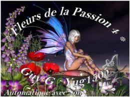 Fleurs de la passion 4