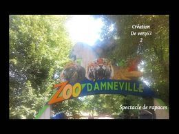 Zoo d'Amneville: Spectacle de rapaces