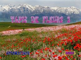 Tapis de fleurs 3