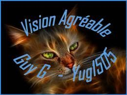 Vision agréable